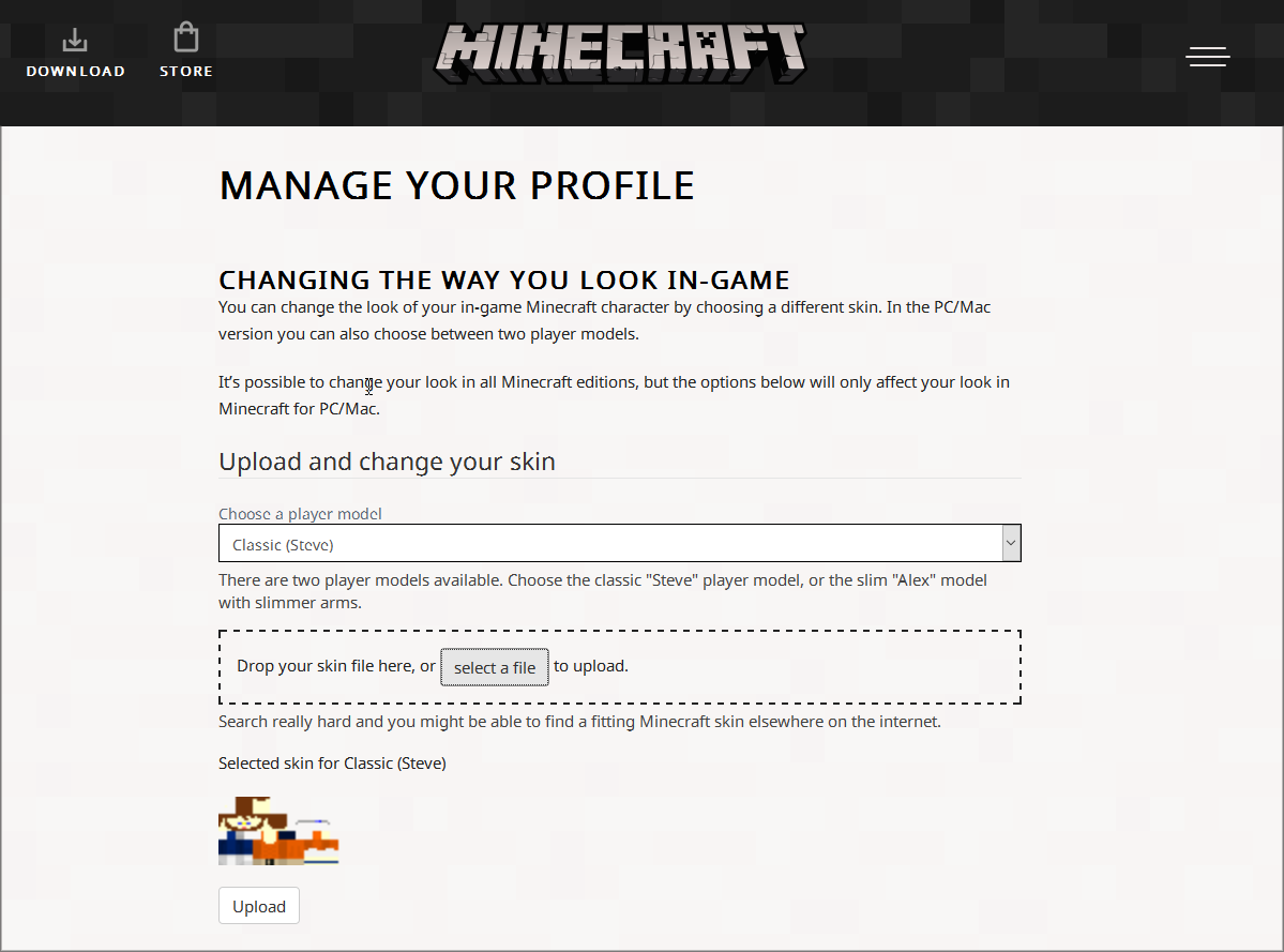 minecraft-net-skin-site