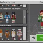 12 дней Minecraft! День третий! Набор скинов от Razzleberies