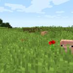 Я увидел скопление ЛЬВОВ! Лишь через пару игровых дней я понял что это свиньи