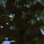 Корчи от коры: игрокам не понравилась текстура коры в Minecraft 1.13. pre-release 1